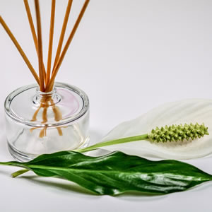 Aromatic Uses for Essential Oils